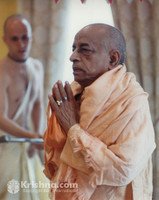 "Srila Prabhupada Photo, Greeting the Deities, 8""x10"""