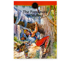 The Pandavas in Hiding, Comic Book