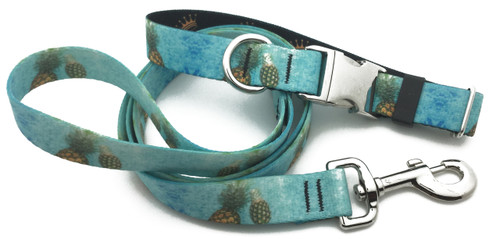 Floating Pineapple Collar & Lead