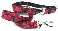 Strawberries Collar & Lead