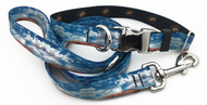 Desert Skies Collar and Lead