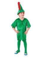 Peter Pan Deluxe, Medium, Childrens Fancy Dress Costume
