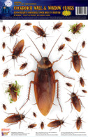 Cockroach Wall & Window Stickers