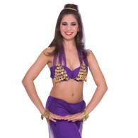 PRINCESS COIN BRA, BELLY DANCER/ARABIAN/BOLLYWOOD