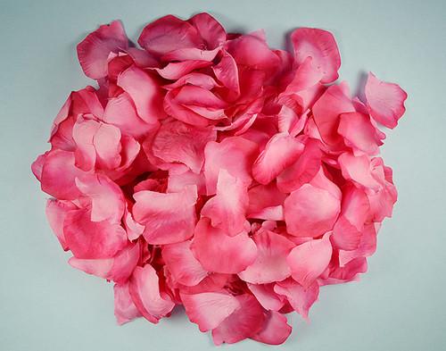 Fuchsia Wedding Silk Rose Flower Petals - 12 Packs