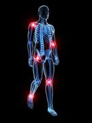 Relieve body aches, leg pain, wrist pain, knee pain, elbow pain with a sacroiliac belt