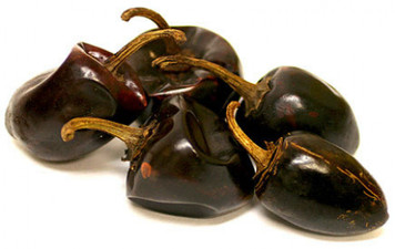 Cascabel Chilli