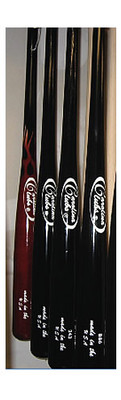 Carolina Clubs Ash Bat: Pro Model B86
