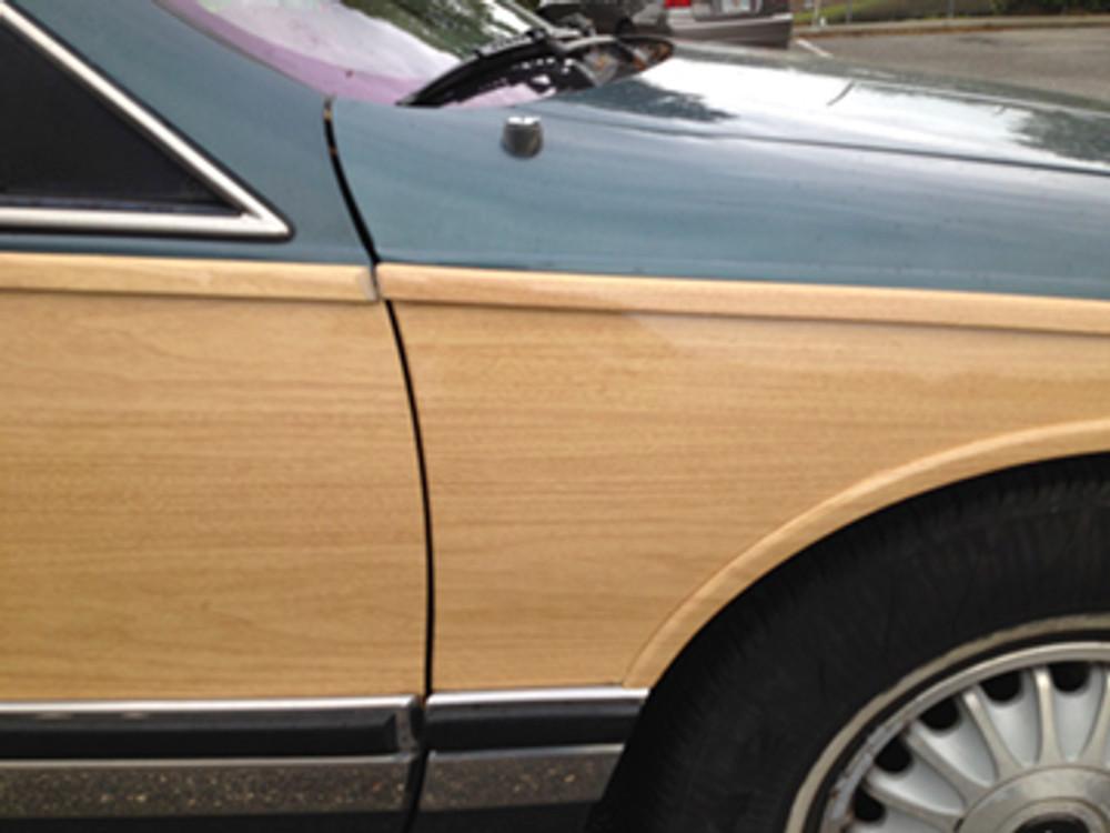 SM0589 Trim Molding Cover Up Close Up