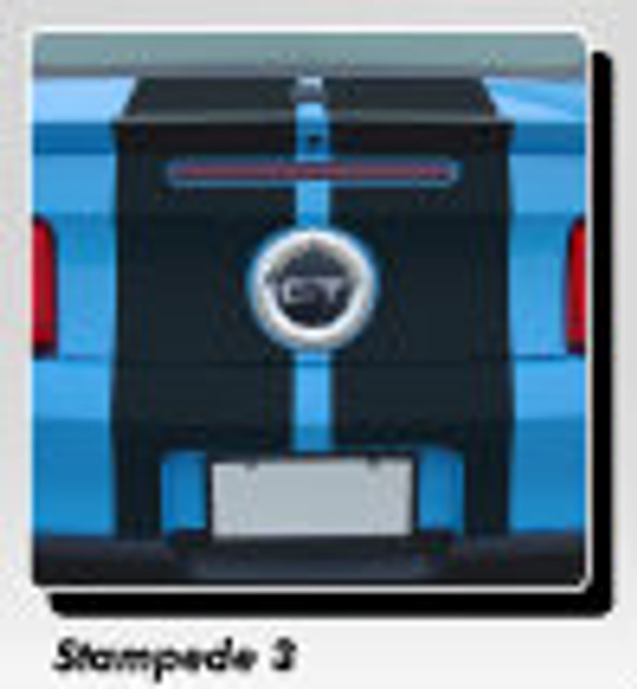 Stampede 3 Racing Stripes for 2010, 2011, 2012 Ford Mustang