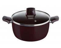 Tefal Pleasure Non-stick Enamel Stewpan 22 cm with Lid