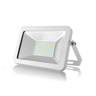 Apple Series 050W Driver-less LED Flood Lamp