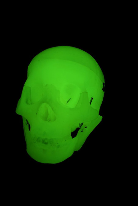 Assembled Glow-In-The-Dark Scary Terry Talking Skull