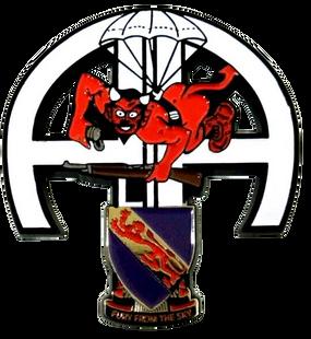 508th Parachute Infantry Regiment Challenge Coin