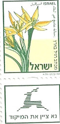 Stamp – Gagea Commutate Lily Stamp