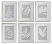 Moonlight Ferns Framed Wall Art, Set Of 6