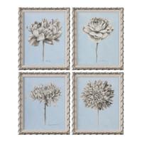 Graphite Botanical Study Floral Prints S/4