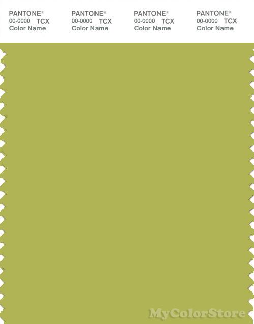 PANTONE SMART 15-0538X Color Swatch Card, Green Oasis