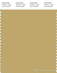 PANTONE SMART 15-0730X Color Swatch Card, Southern Moss