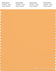 PANTONE SMART 15-1145X Color Swatch Card, Chamois