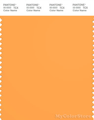PANTONE SMART 15-1160X Color Swatch Card, Blazing Orange