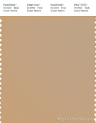 PANTONE SMART 15-1213X Color Swatch Card, Candied Ginger
