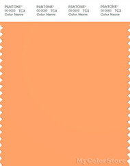 PANTONE SMART 15-1245X Color Swatch Card, Mock Orange