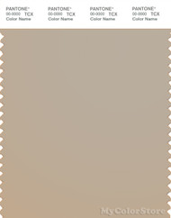 PANTONE SMART 15-1305X Color Swatch Card, Feather Gray