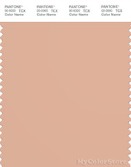 PANTONE SMART 15-1318X Color Swatch Card, 2pink Sand