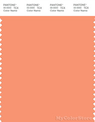 PANTONE SMART 15-1340X Color Swatch Card, Cadmium Orange