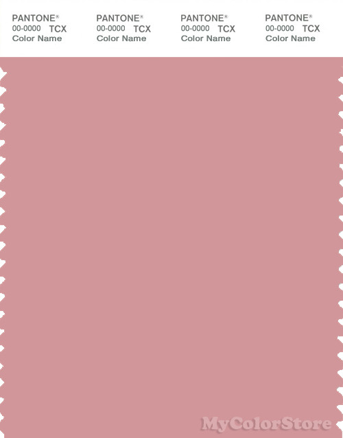 PANTONE SMART 15-1614X Color Swatch Card, Blush