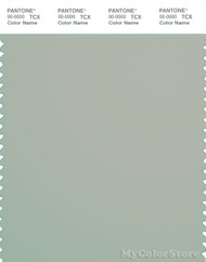 PANTONE SMART 15-5704X Color Swatch Card, Mineral Gray