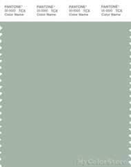 PANTONE SMART 15-5706X Color Swatch Card, Frosty Green
