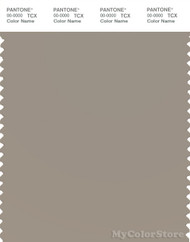 PANTONE SMART 16-0205X Color Swatch Card, Vintage Khaki