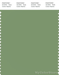 PANTONE SMART 16-0224X Color Swatch Card, Green Eyes