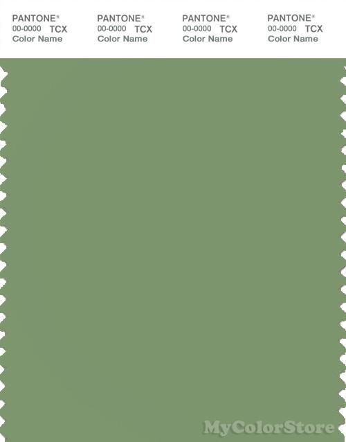 PANTONE SMART 16-0224X Color Swatch Card, Green Eyes