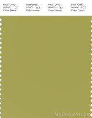 PANTONE SMART 16-0540X Color Swatch Card, Oasis