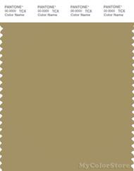 PANTONE SMART 16-0726X Color Swatch Card, Khaki