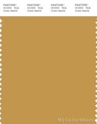PANTONE SMART 16-0945X Color Swatch Card, Tinsel