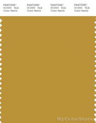PANTONE SMART 16-0946X Color Swatch Card, Honey