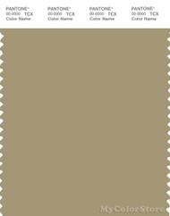 PANTONE SMART 16-1118X Color Swatch Card, Sponge