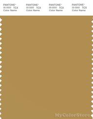 PANTONE SMART 16-1133X Color Swatch Card, Mustard Gold