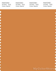 PANTONE SMART 16-1150X Color Swatch Card, Topaz
