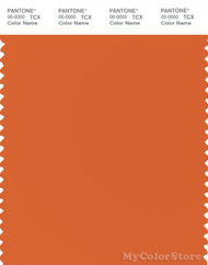 PANTONE SMART 16-1260X Color Swatch Card, Harvest Pumpkin