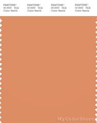 PANTONE SMART 16-1338X Color Swatch Card, Copper Tan