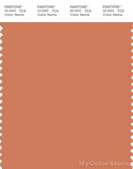 PANTONE SMART 16-1340X Color Swatch Card, Brandied Melon