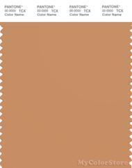 PANTONE SMART 16-1341X Color Swatch Card, Butterum