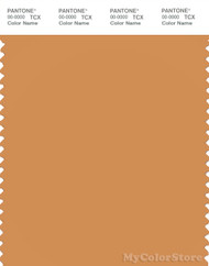 PANTONE SMART 16-1342X Color Swatch Card, Buckskin