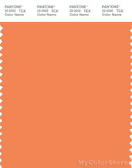 PANTONE SMART 16-1343X Color Swatch Card, Autumn Sunset