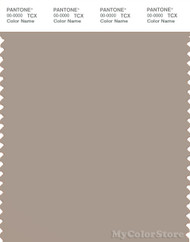 PANTONE SMART 16-1407X Color Swatch Card, Cobblestone